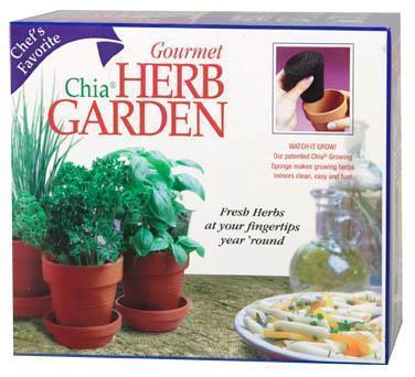 Chia Herb Garden: $14.99 at Rite Aid